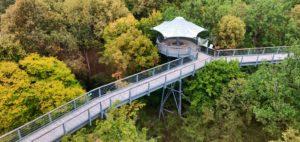 Baumkronenpfad im Nationalpark Hainich im Bundesland Thüringen