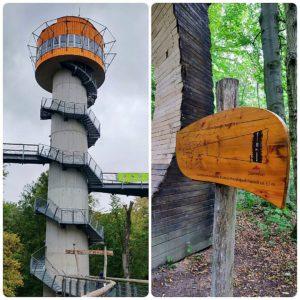 Baumturm und Holzmodell eine Baumumfangs