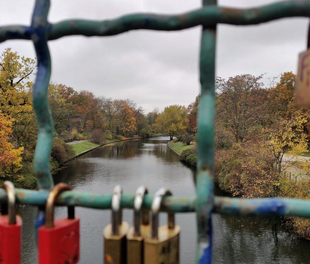 Ausblick auf den herbstlichen Tiergarten - Brückenfoto